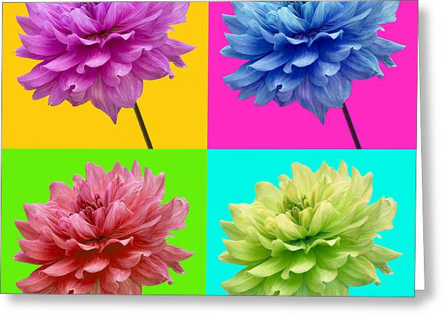 Bright Colored Dahlia Flowers Greeting Card by Natalie Kinnear