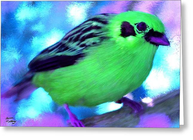 Bright Green Finch Greeting Card