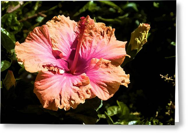 Greeting Card featuring the digital art Bright Hibiscus Flower by Photographic Art by Russel Ray Photos