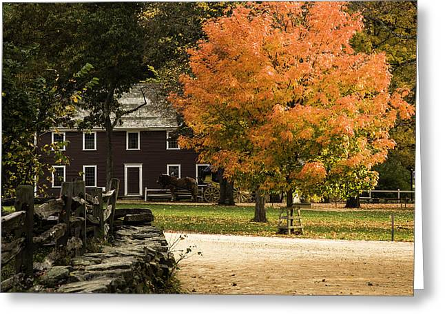 Greeting Card featuring the photograph Bright Orange Autumn by Jeff Folger