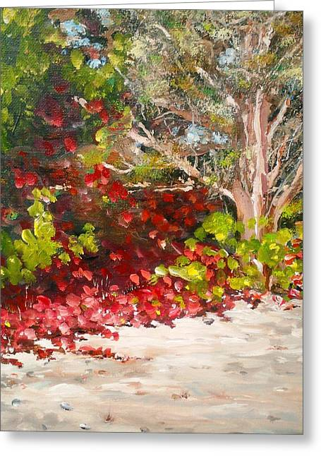 Bright Red By The Beach Greeting Card