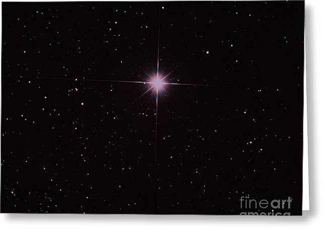 Bright Star Capella Greeting Card by John Chumack