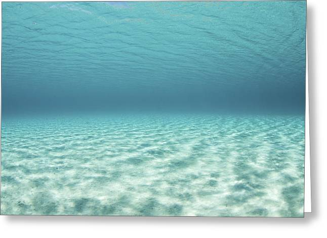 Bright Sunlight Ripples Greeting Card by Ethan Daniels