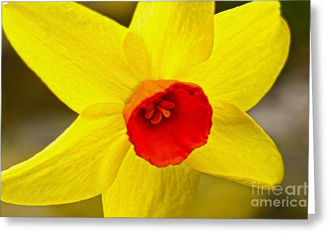Bright Yellow Greeting Card by Nur Roy