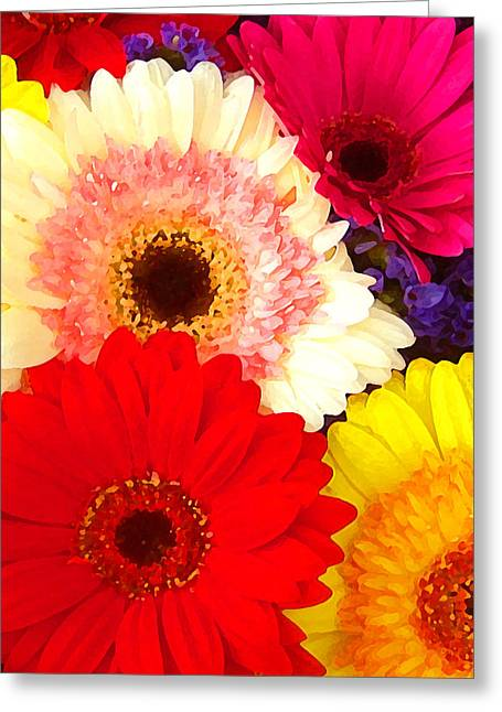 Brightly Colored Gerbers Greeting Card