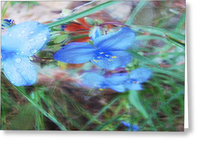 Greeting Card featuring the photograph Brilliant Blue Flowers by Cathy Anderson