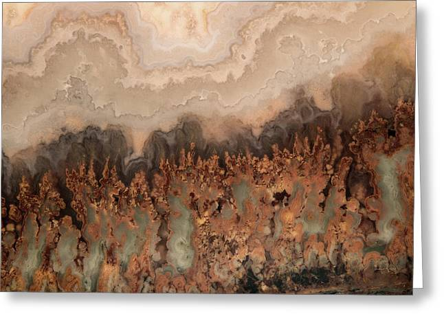 Brilliant Plume Agate Greeting Card by Leland D Howard