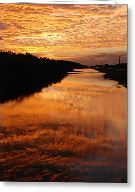 Brilliant Reflection Greeting Card