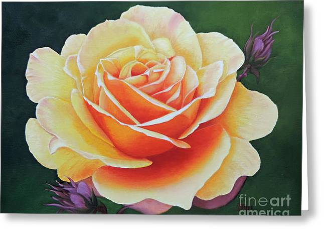Brilliant Rose Greeting Card by Jimmie Bartlett