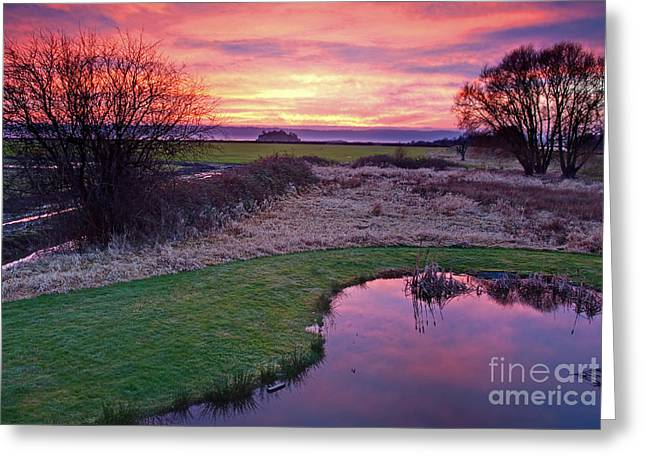 Brilliant Sunset With Pond Landscape Greeting Card