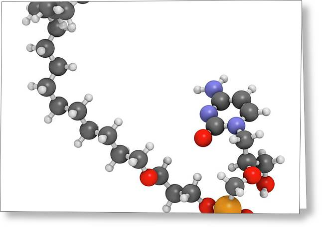 Brincidofovir Antiviral Drug Molecule Greeting Card