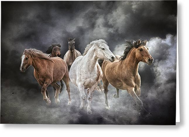 Brings The Thunder Greeting Card by Ron  McGinnis