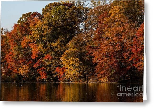 Brinton Lake Greeting Card by Judy Wolinsky