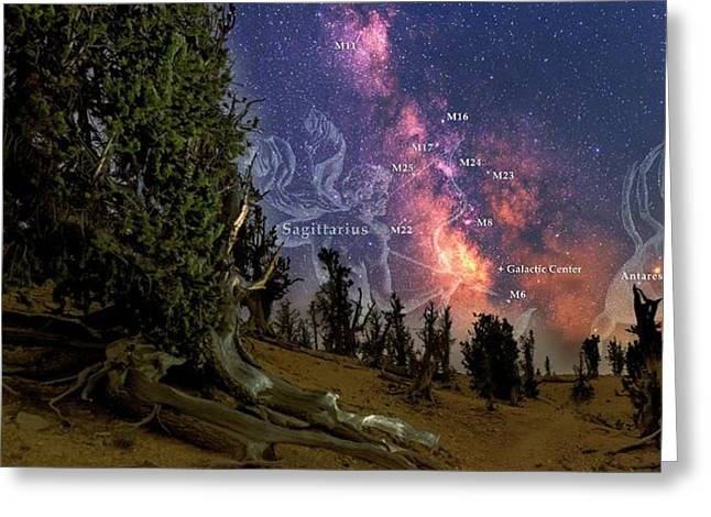 Bristlecone Forest And The Milky Way Greeting Card by Babak Tafreshi