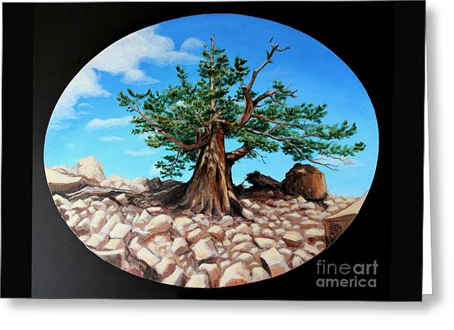 Bristlecone Pine Greeting Card