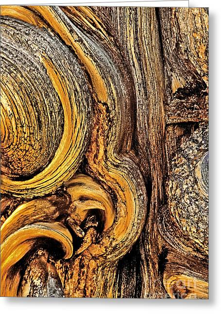 Greeting Card featuring the photograph Bristlecone Pine Bark Detail White Mountains Ca by Dave Welling