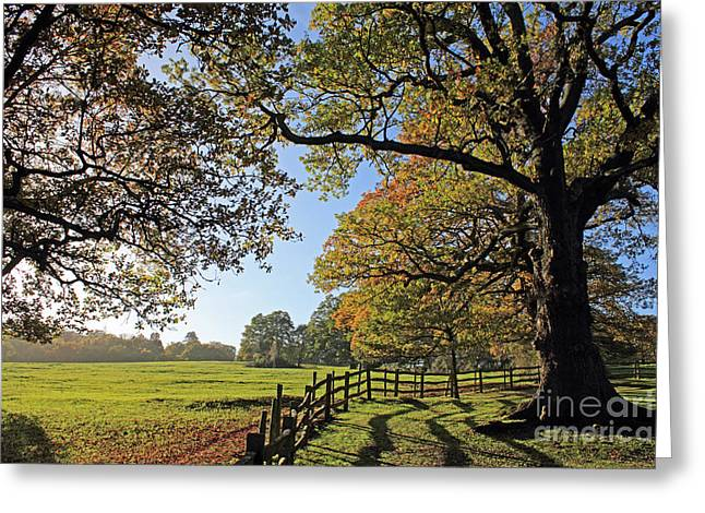 British Autumn Greeting Card
