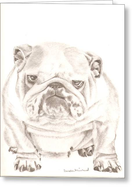 British Bulldog Winnie Greeting Card