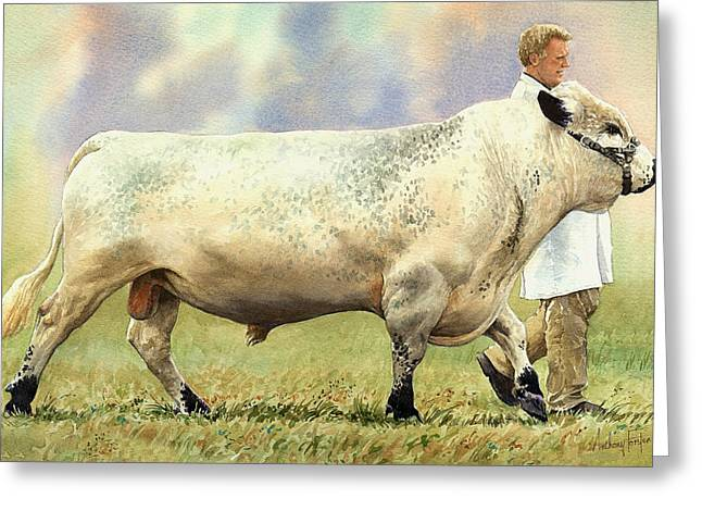 British White Bull Greeting Card by Anthony Forster