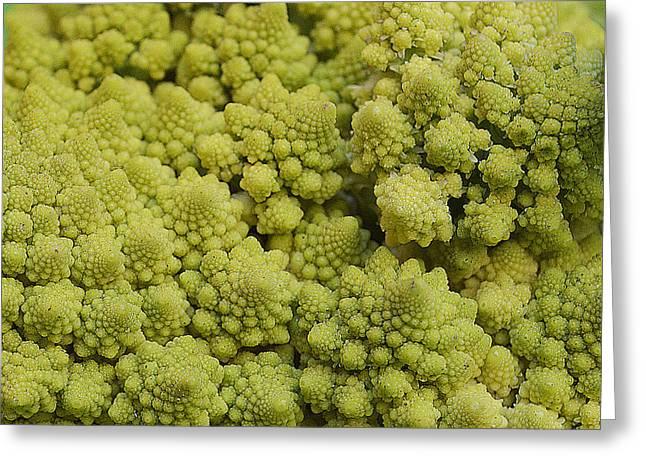 Broccoli Heirloom Greeting Card by Felicia Tica