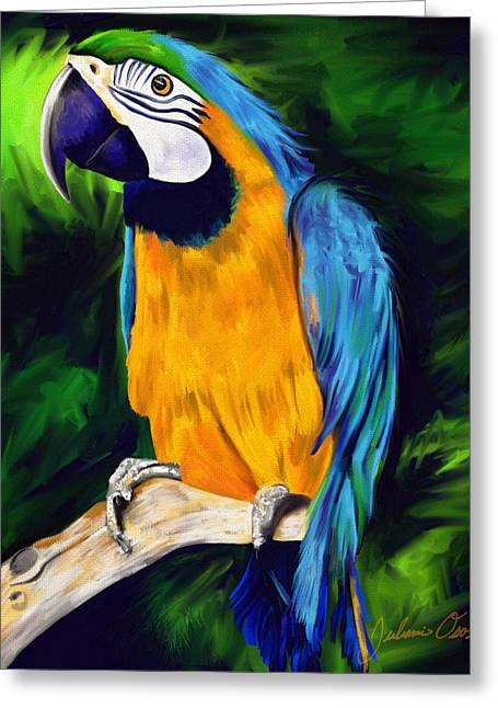 Brody Blue And Yellow Macaw Parrot Greeting Card by Julianne  Ososke