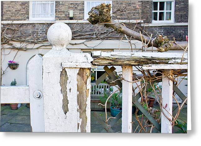 Broken Fence Greeting Card by Tom Gowanlock