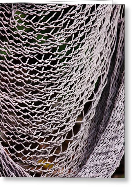 Medium image of broken hammock greeting card by camille watson