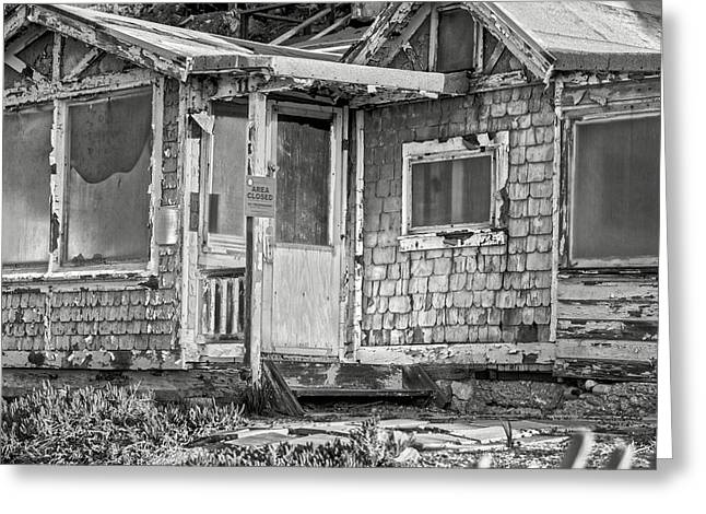 Broken Humility Bw By Denise Dube Greeting Card