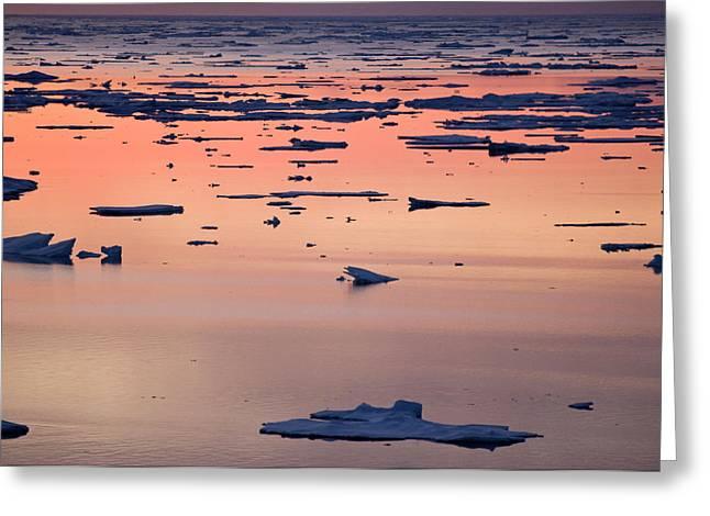 Broken Sea Ice At Sunset, Kong Oscar Greeting Card by Daisy Gilardini
