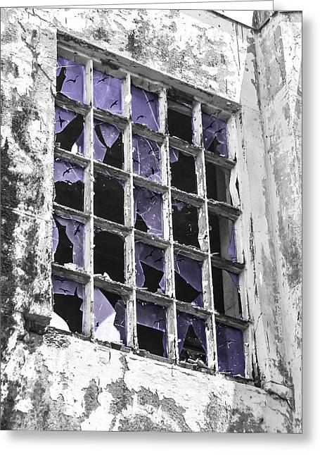 Broken Windows With Birds Greeting Card