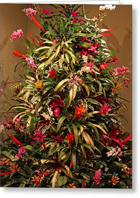 Bromeliad And Orchid Tree Greeting Card