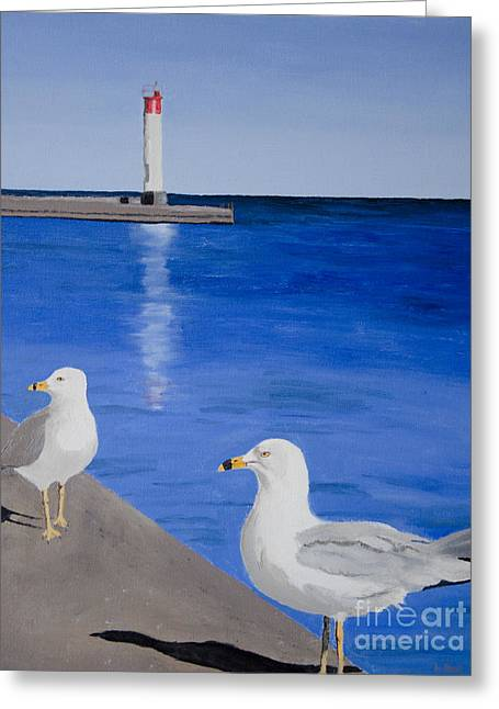 Bronte Lighthouse Gulls In Oil Greeting Card