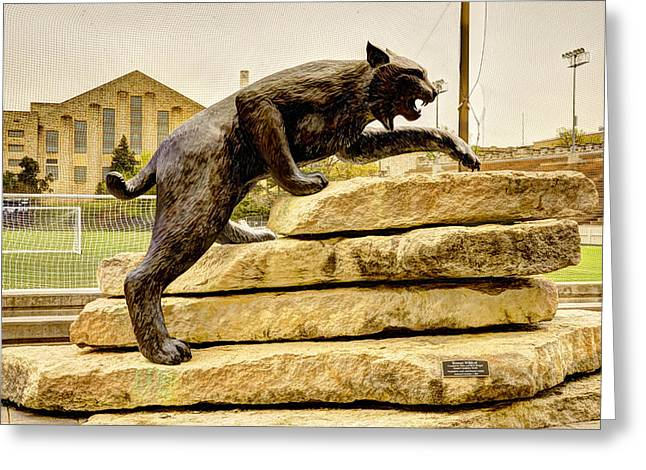 Kansas State Bronze Wildcat Greeting Card by Jean Hutchison