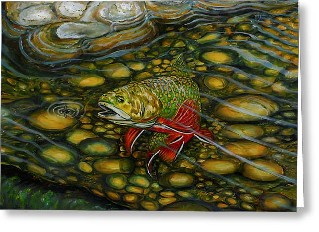 Brook Trout Greeting Card by Steve Ozment