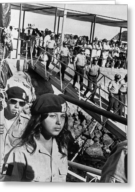 Brown Berets Leave Catalina Greeting Card