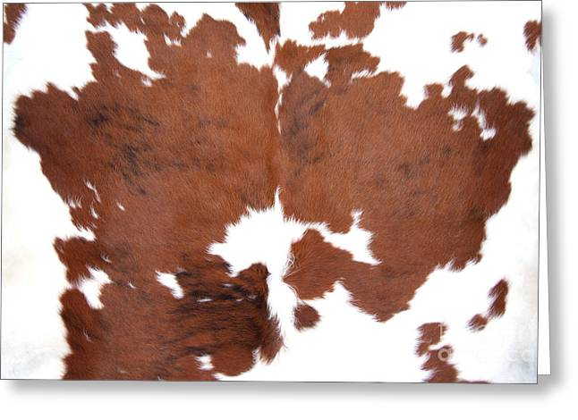 Brown Cowhide Greeting Card by Gunter Nezhoda
