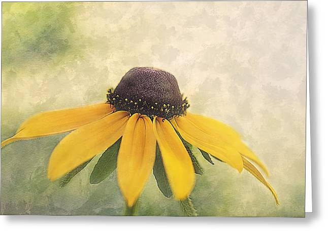 Brown Eyed Girl Greeting Card by Faith Simbeck