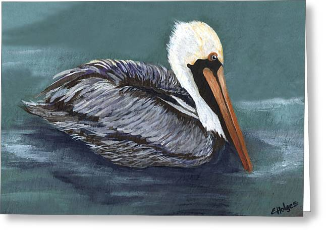 Brown Pelican On Water Greeting Card by Elaine Hodges