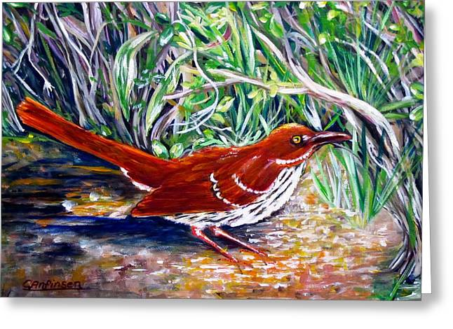 Brown Thrasher In Sunlight Greeting Card