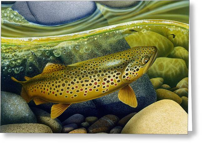 Brown Trout Greeting Card by Jon Q Wright