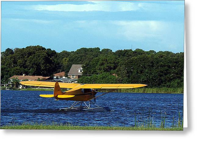 Brown's Piper Cub Greeting Card