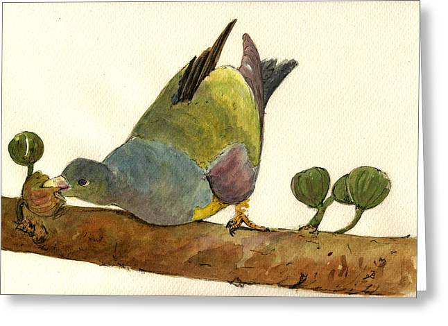 Bruce S Green Pigeon Greeting Card