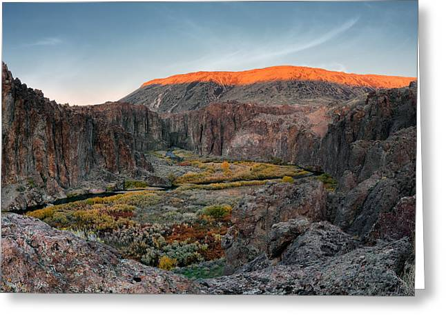 Bruneau River And Canyon Greeting Card by Leland D Howard