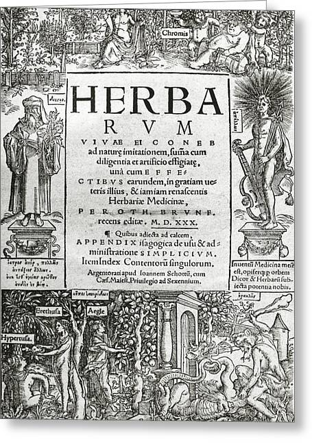 Brunfels's Herbarium (1530) Greeting Card by Science Photo Library