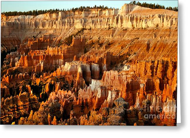 Bryce Amphitheater Greeting Card by Robert Bales