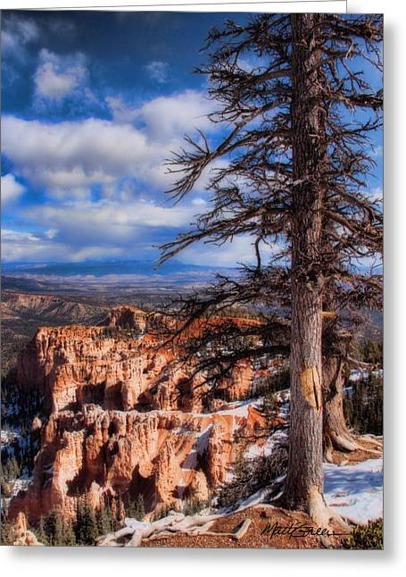 Bryce Canyon 1 Greeting Card by Marti Green