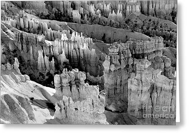 Bryce Canyon Bw Greeting Card