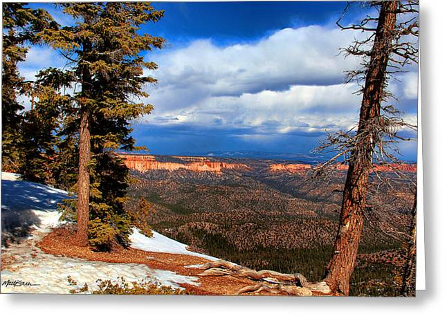 Bryce Canyon Cliff Shot 3 Greeting Card by Marti Green