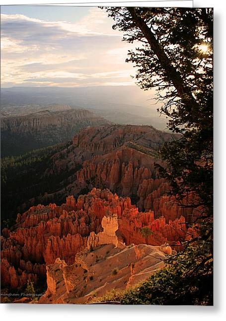 Bryce Canyon Early Morning View Greeting Card by Dorothy Cunningham