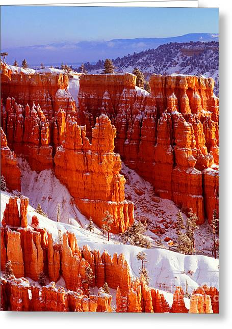 Bryce Canyon In Snow Greeting Card